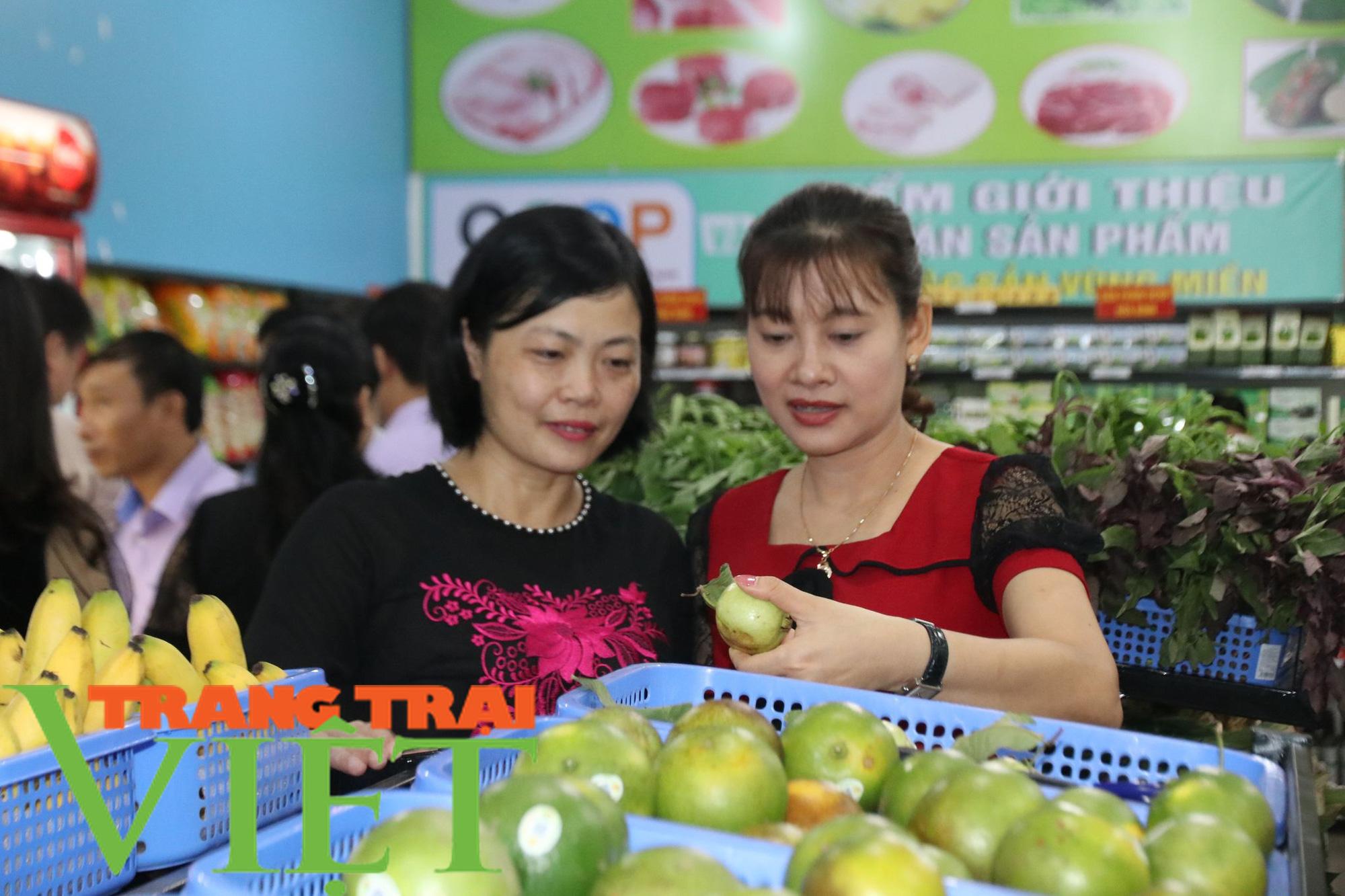 Gần 3,8 vạn nông dân tỉnh Hòa Bình đạt danh hiệu sản xuất, kinh doanh giỏi - Ảnh 6.