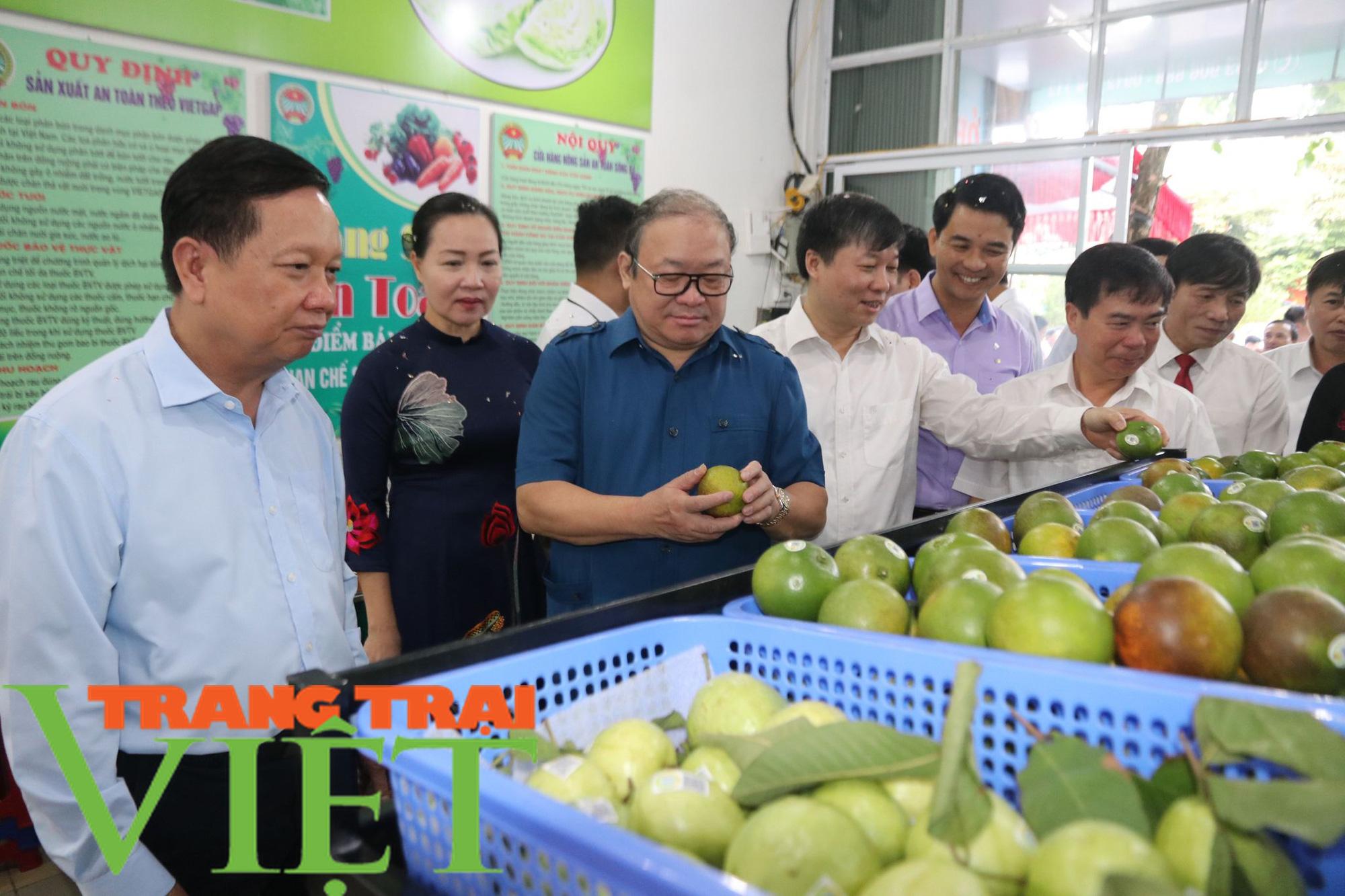 Gần 3,8 vạn nông dân tỉnh Hòa Bình đạt danh hiệu sản xuất, kinh doanh giỏi - Ảnh 2.
