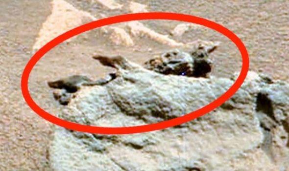 Tìm thấy hóa thạch của người ngoài hành tinh trên sao Hỏa  - Ảnh 2.