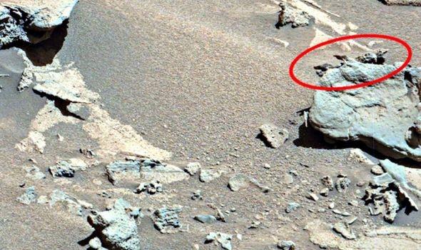 Tìm thấy hóa thạch của người ngoài hành tinh trên sao Hỏa  - Ảnh 3.