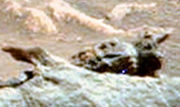 Tìm thấy hóa thạch của người ngoài hành tinh trên sao Hỏa  - Ảnh 4.