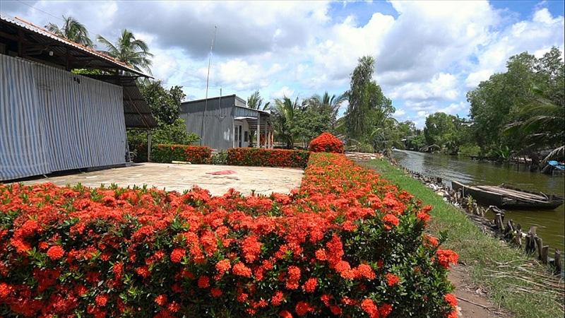 Kiên Giang: Chiêm ngưỡng ngôi nhà quê với hàng rào độc khiến thị dân chỉ biết ước - Ảnh 5.