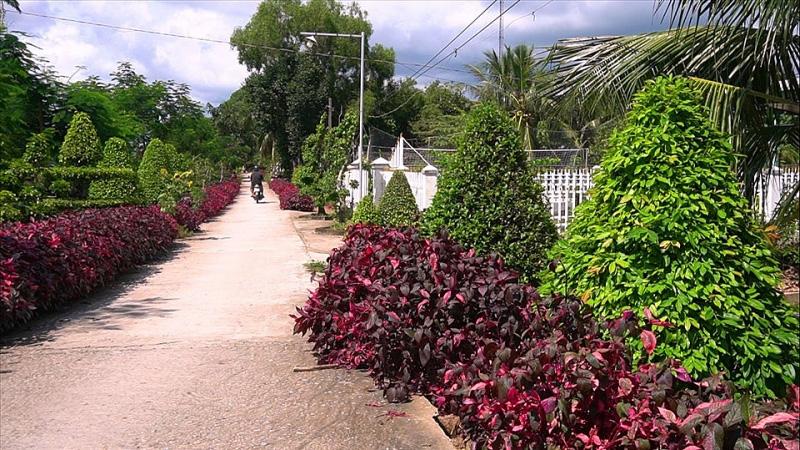 Kiên Giang: Chiêm ngưỡng ngôi nhà quê với hàng rào độc khiến thị dân chỉ biết ước - Ảnh 8.