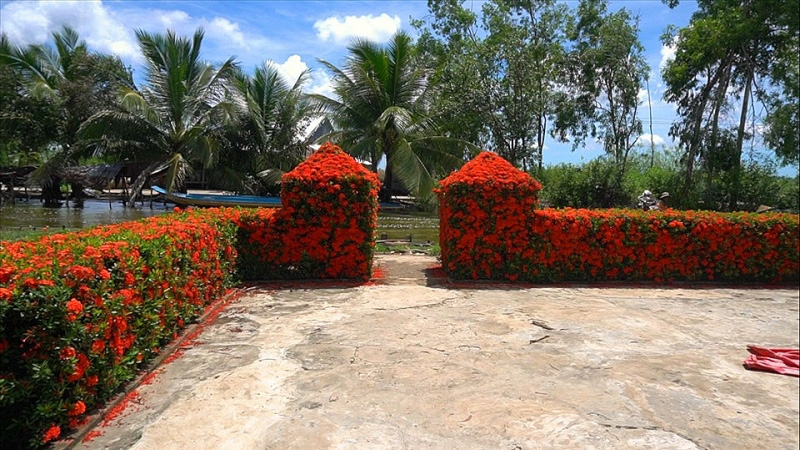 Kiên Giang: Chiêm ngưỡng ngôi nhà quê với hàng rào độc khiến thị dân chỉ biết ước - Ảnh 11.
