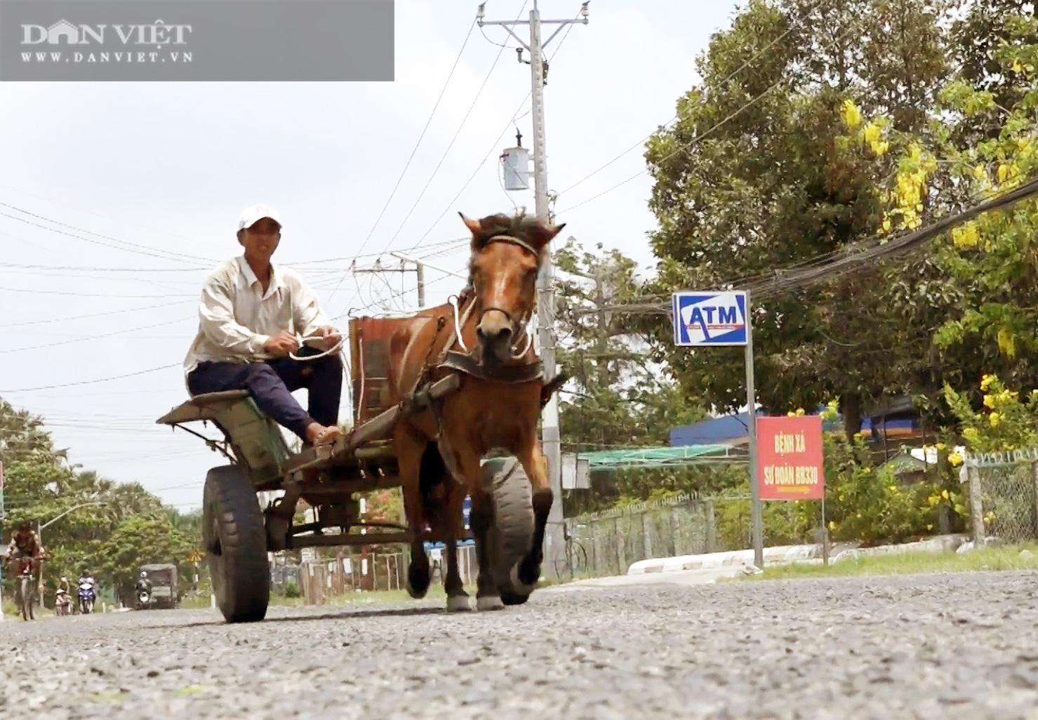 Những chiếc xe ngựa cuối cùng của vùng Bảy Núi - Ảnh 1.