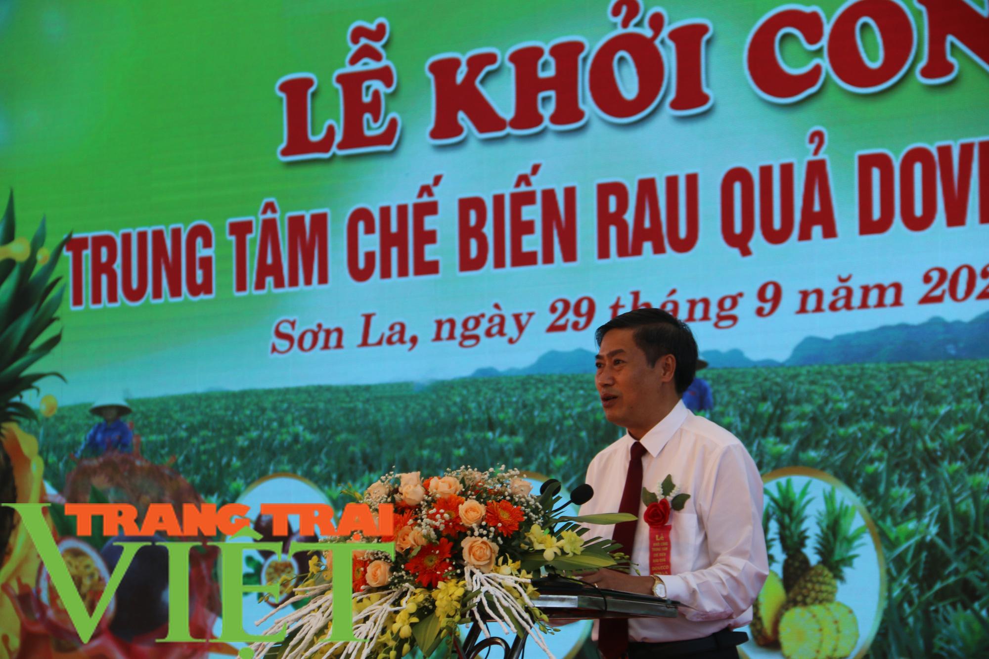 Sơn La: Xây dựng trung tâm chế biến rau, quả tại huyện Mai Sơn - Ảnh 3.