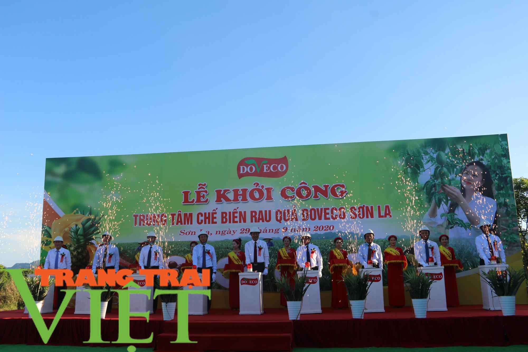 Sơn La: Xây dựng trung tâm chế biến rau, quả tại huyện Mai Sơn - Ảnh 5.