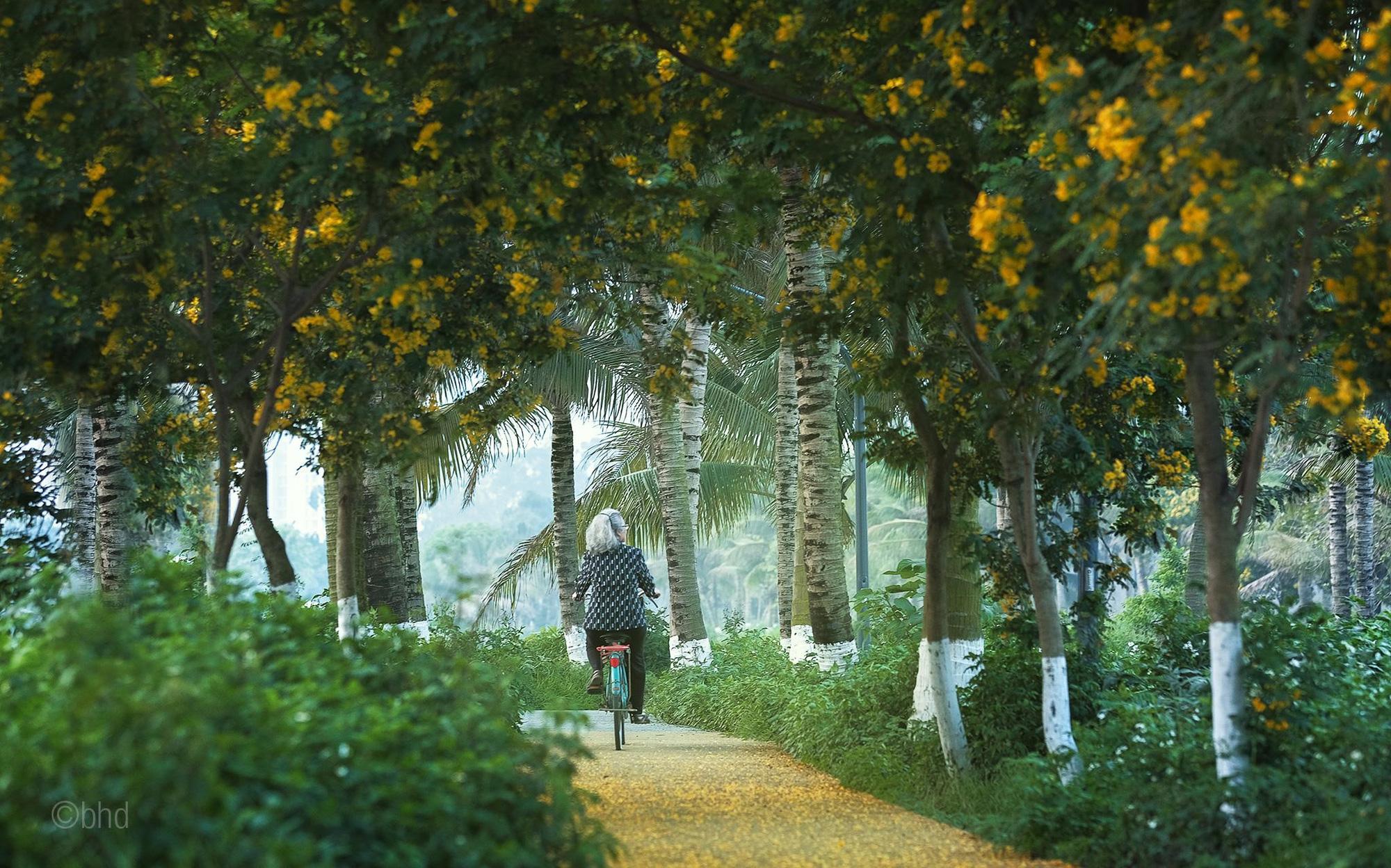 Ngắm bình minh đẹp như tranh vẽ tại khu đô thị xanh Ecopark - Ảnh 12.