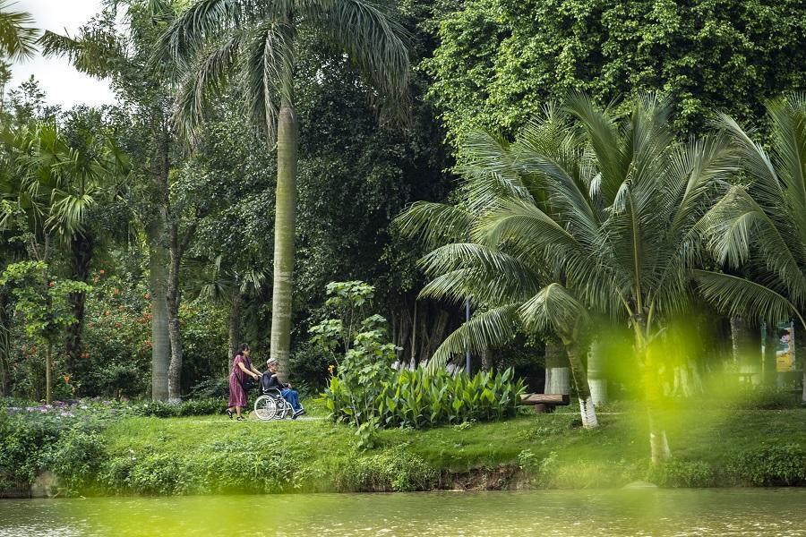 Ngắm bình minh đẹp như tranh vẽ tại khu đô thị xanh Ecopark - Ảnh 7.