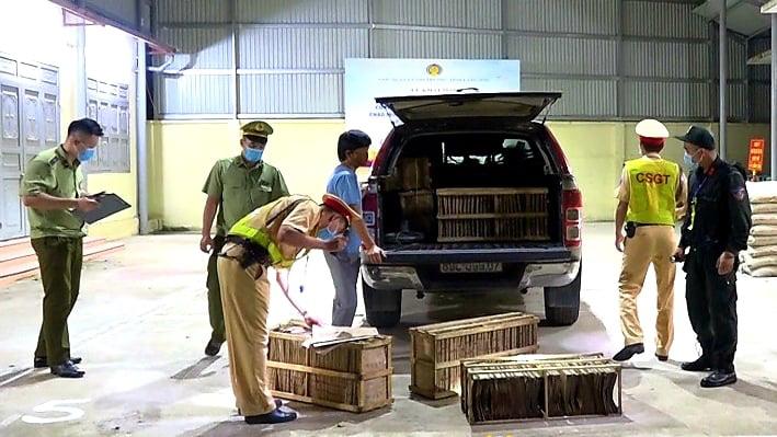 Lạng Sơn: Tiêu hủy 1.000 tờ giấy dính đầy trứng tằm nhập lậu từ Trung Quốc - Ảnh 1.