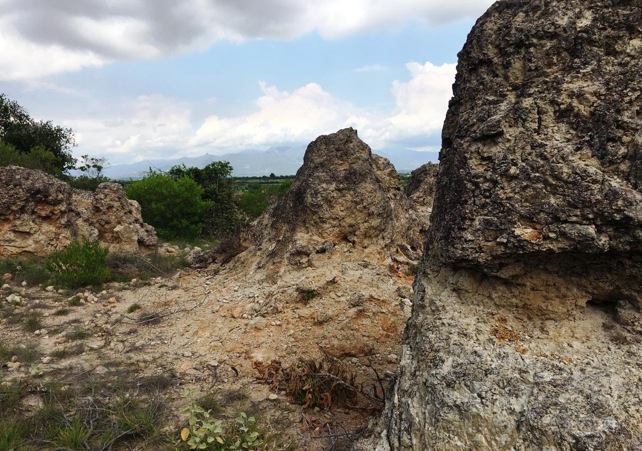 Ninh Thuận: Chùm ảnh về bãi san hô cổ  - Ảnh 2.