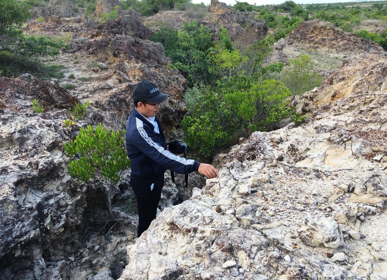Ninh Thuận: Chùm ảnh về bãi san hô cổ  - Ảnh 1.