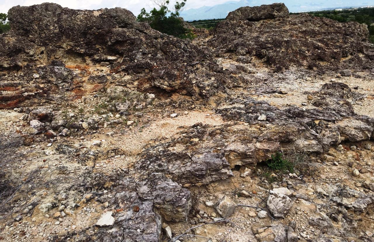 Ninh Thuận: Chùm ảnh về bãi san hô cổ  - Ảnh 7.