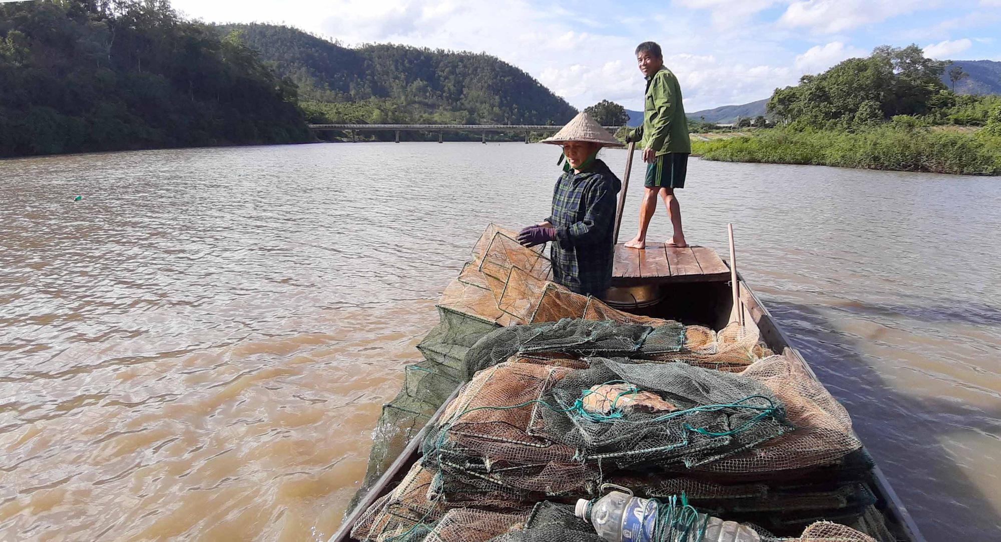 """Vùng đất nông dân buông lưới, đặt lờ """"rình"""" bắt những con cá quý hiếm mà thiên hạ tôn lên hàng cá đặc sản - Ảnh 2."""