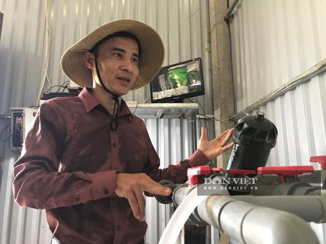Trồng dưa lưới công nghệ Israel, nông dân Lê Văn Long thu gần 200 triệu đồng sau hơn hai tháng - Ảnh 3.
