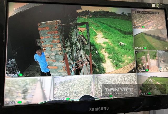 Trồng dưa lưới công nghệ Israel, nông dân Lê Văn Long thu gần 200 triệu đồng sau hơn hai tháng - Ảnh 5.