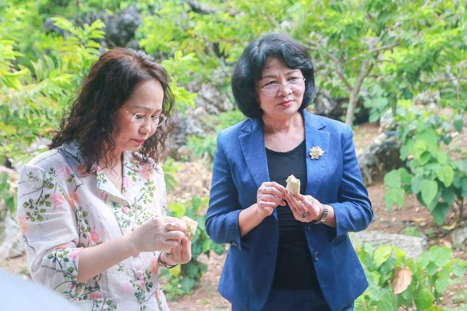 Phó Chủ tịch nước thăm vườn na mẫu huyện Chi Lăng, Lạng Sơn - Ảnh 2.