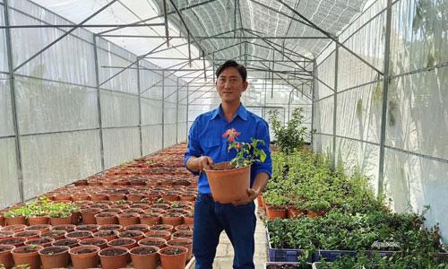 Tiền Giang: Anh nông dân trẻ bất ngờ thu 10 tỷ đồng nhờ trồng sâm quý trong chậu - Ảnh 1.