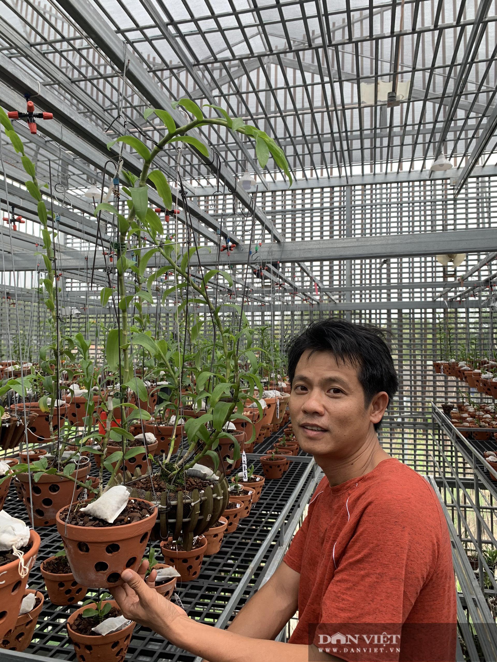 Có gì bên trong khu vườn trồng toàn lan đột biến, trị giá hơn 60 tỷ ở Cần Thơ? - Ảnh 3.