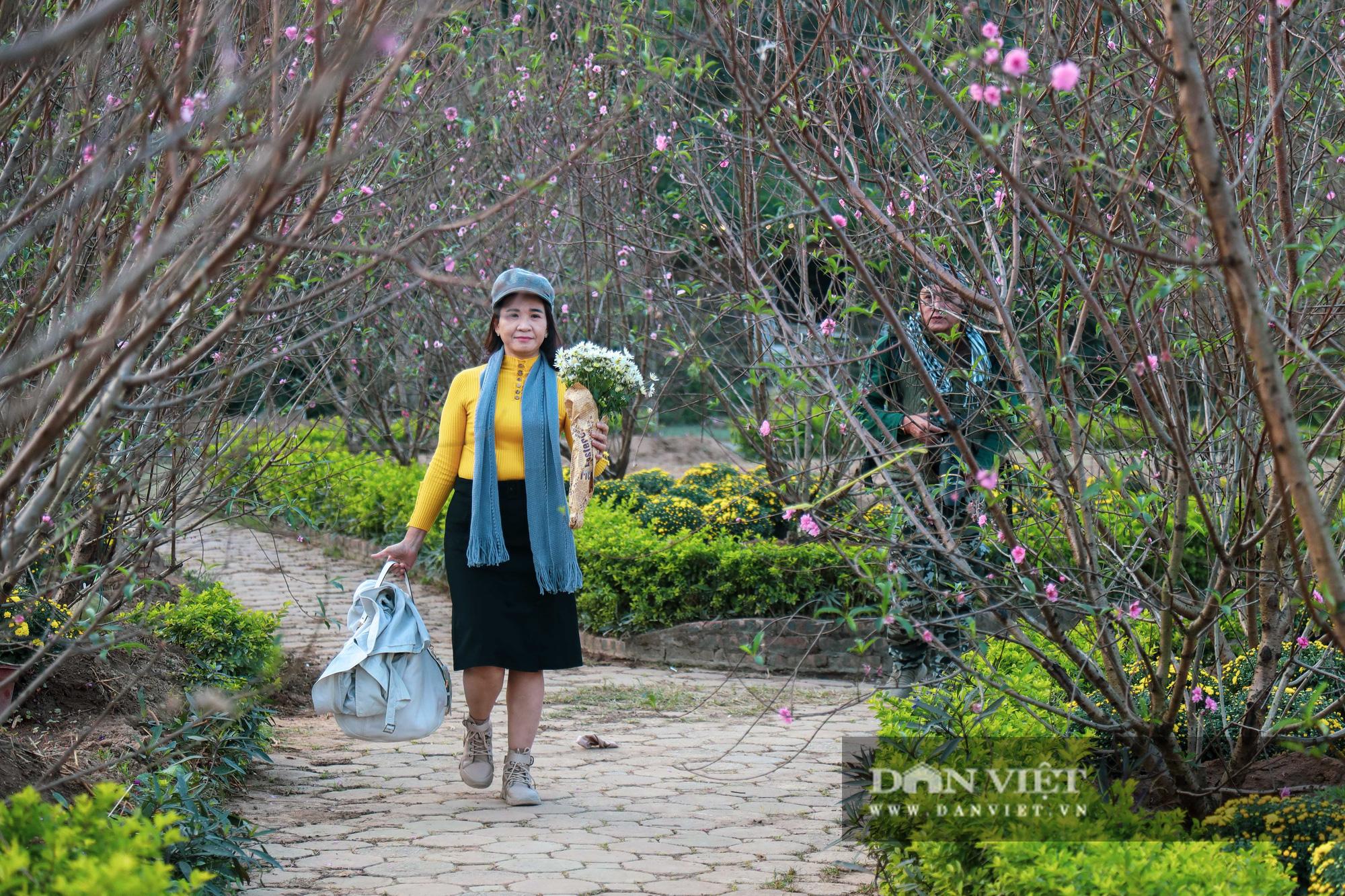 Người Hà Nội nô nức chụp ảnh check-in hoa đào từ Tết Dương lịch - Ảnh 1.