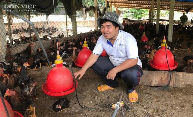 Giá gà đang tăng nhẹ, người nuôi ở Bình Định chờ giá bứt phá vào cận Tết Nguyên đán Tân Sửu 2021 - Ảnh 1.