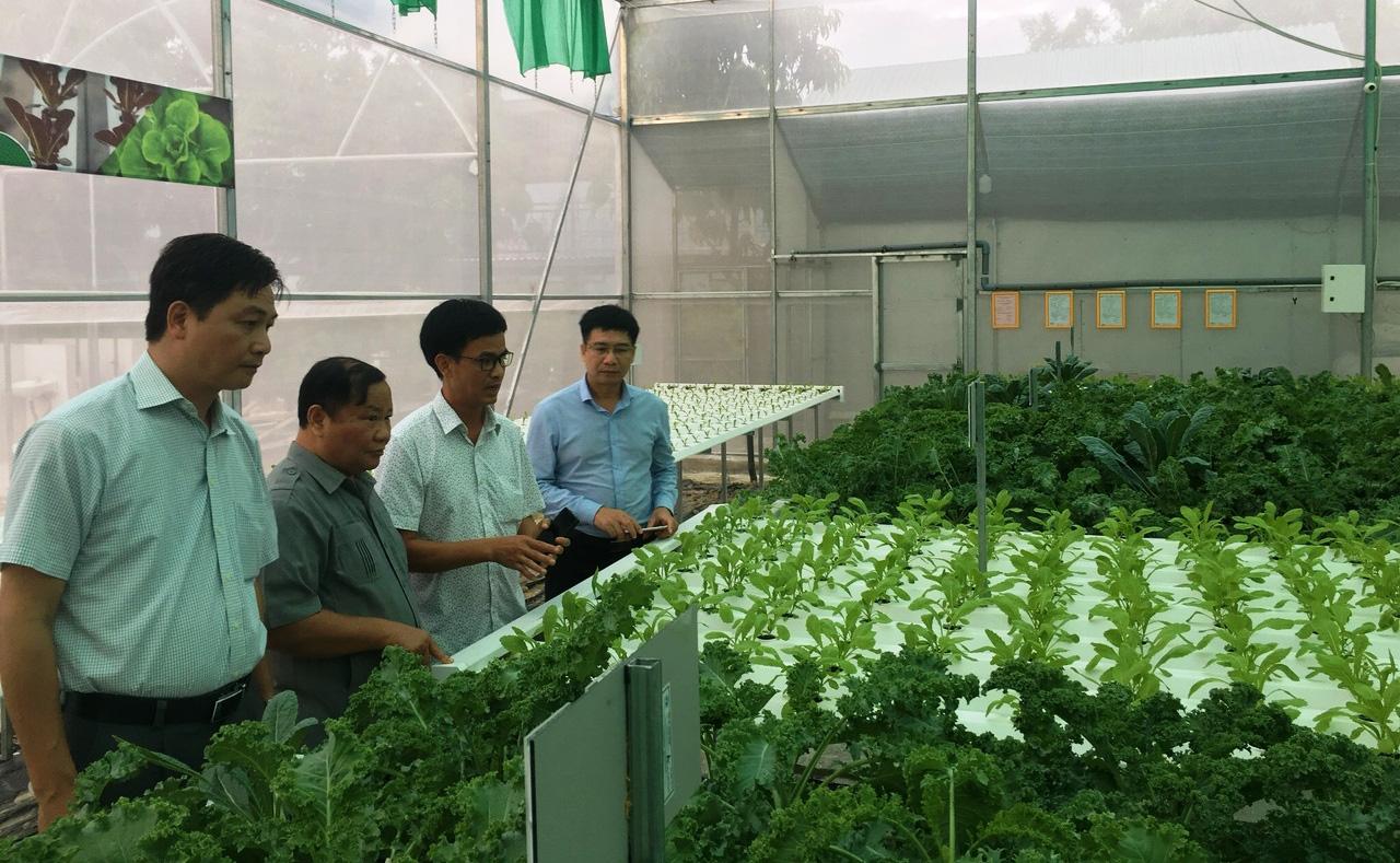 Hội Nông dân Khánh Hòa: Nhiều mô hình giúp hội viên, nông dân phát triển kinh tế - Ảnh 3.