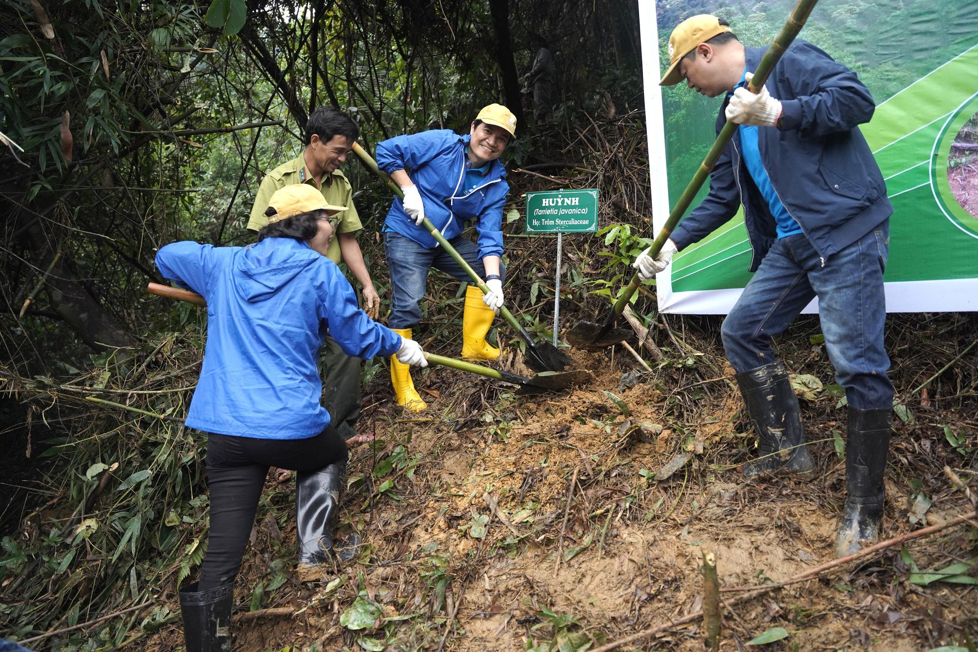Trồng 2.500 cây gỗ bản địa đầu tiên tại Khu bảo tồn thiên nhiên Phong Điền - Ảnh 6.