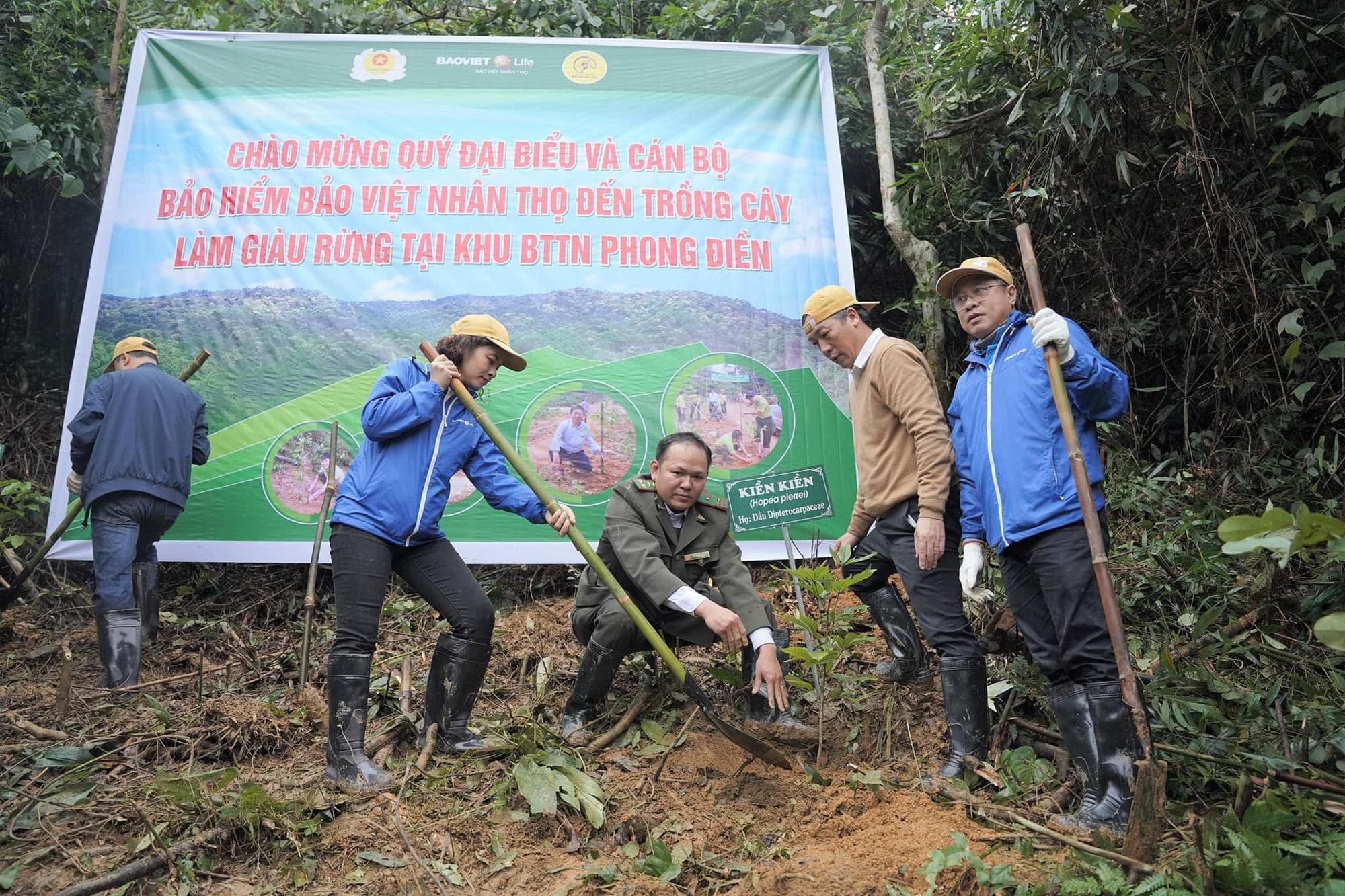 Trồng 2.500 cây gỗ bản địa đầu tiên tại Khu bảo tồn thiên nhiên Phong Điền - Ảnh 4.