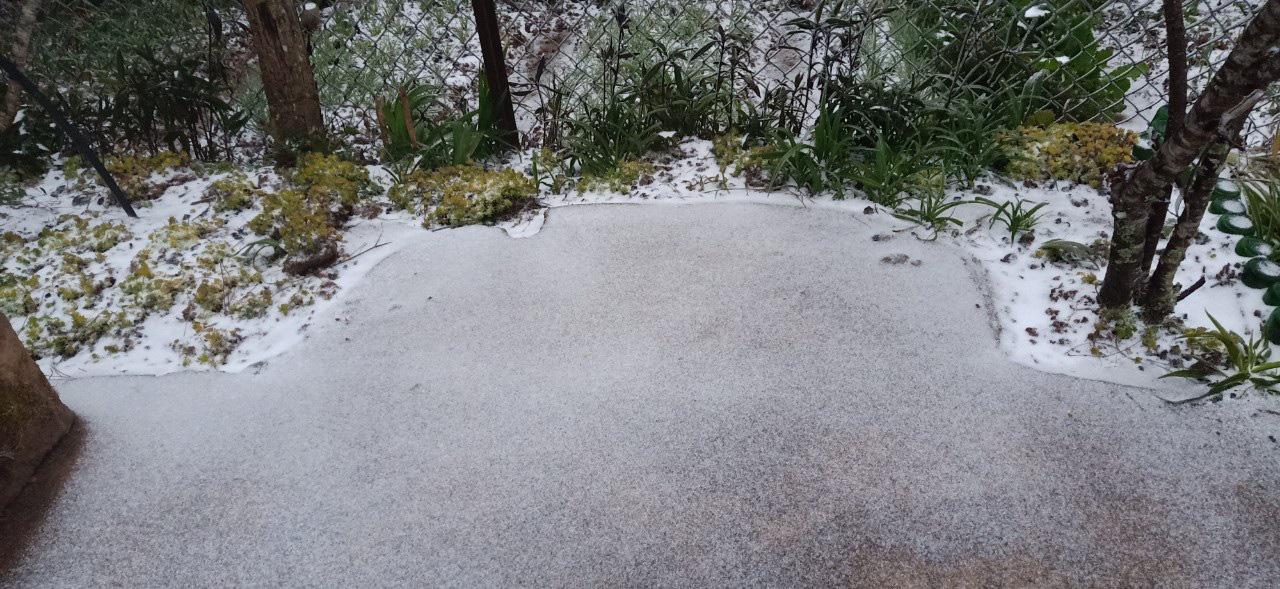 Tuyết rơi dày đặc ở Y Tý, cảnh vật phủ màu trắng xóa như trời Âu - Ảnh 6.