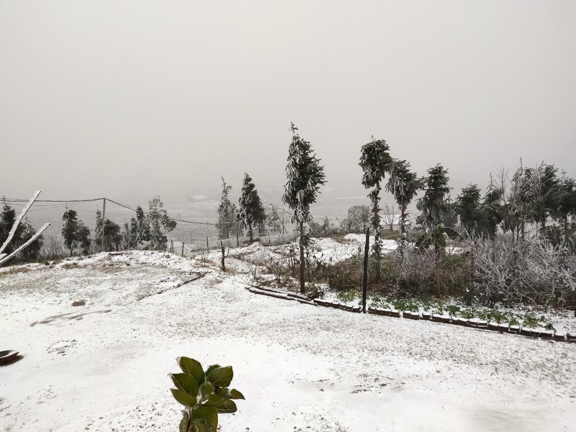 Tuyết rơi dày đặc ở Y Tý, cảnh vật phủ màu trắng xóa như trời Âu - Ảnh 2.