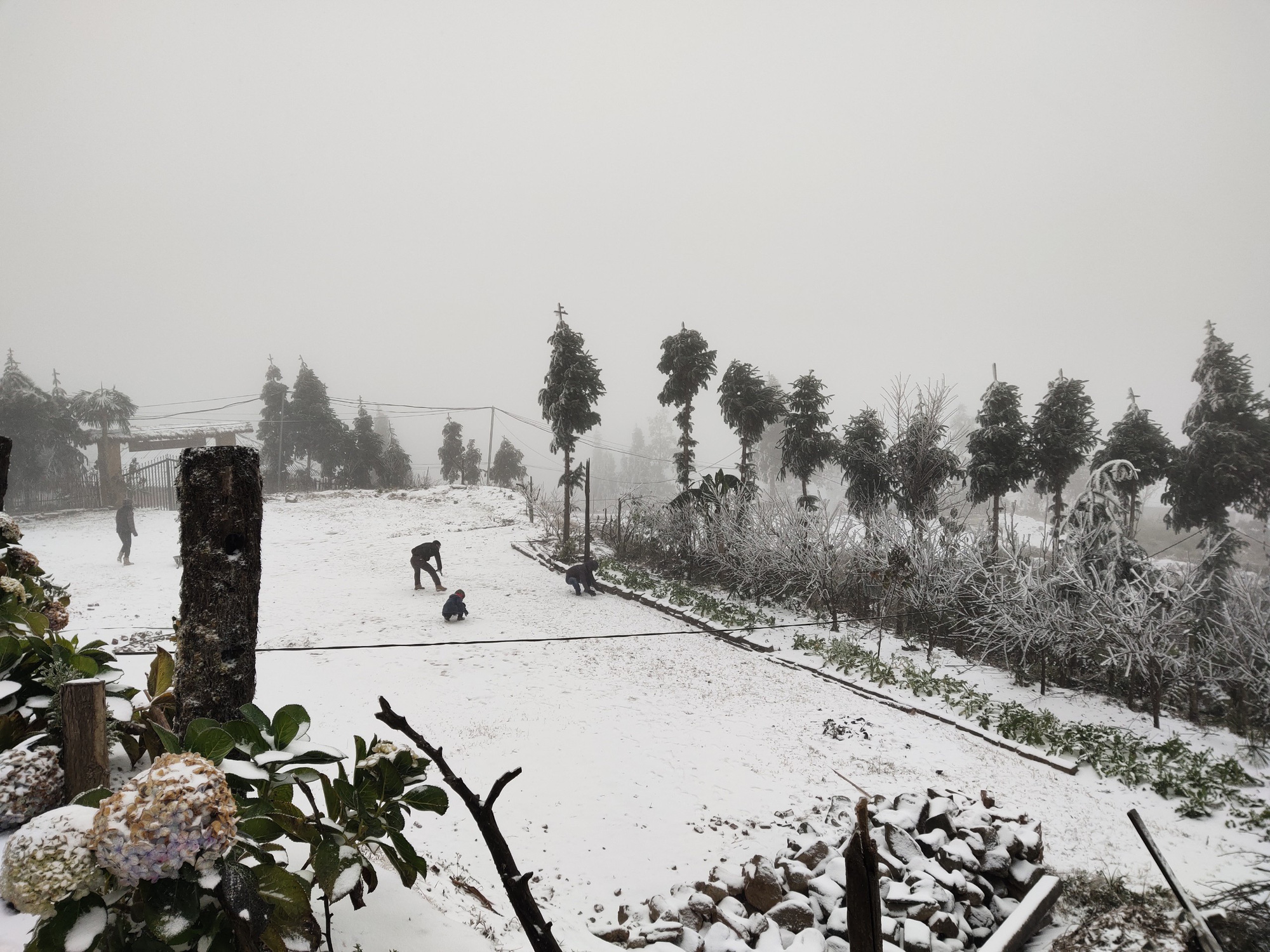 Tuyết rơi dày đặc ở Y Tý, cảnh vật phủ màu trắng xóa như trời Âu - Ảnh 8.