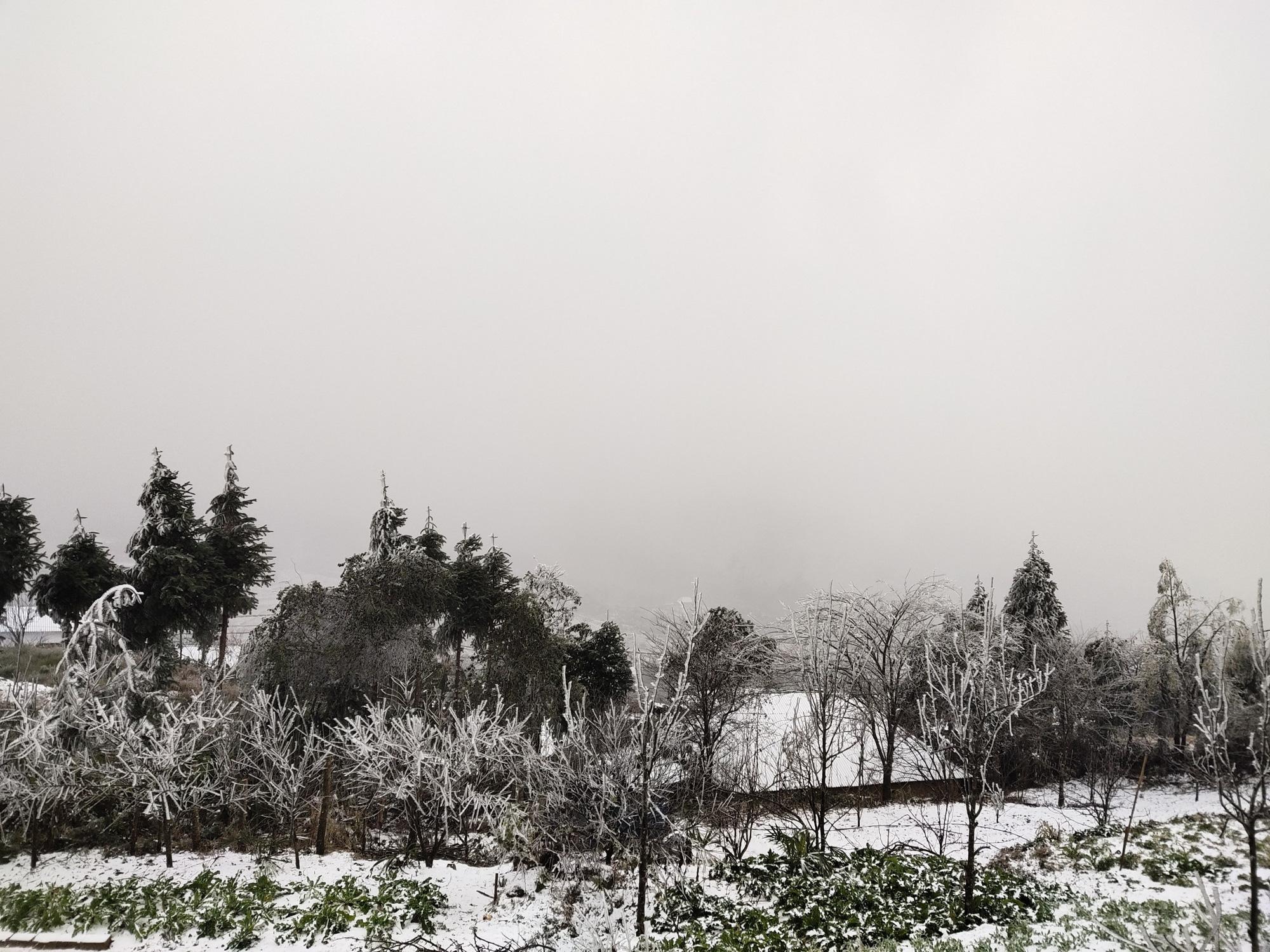 Tuyết rơi dày đặc ở Y Tý, cảnh vật phủ màu trắng xóa như trời Âu
