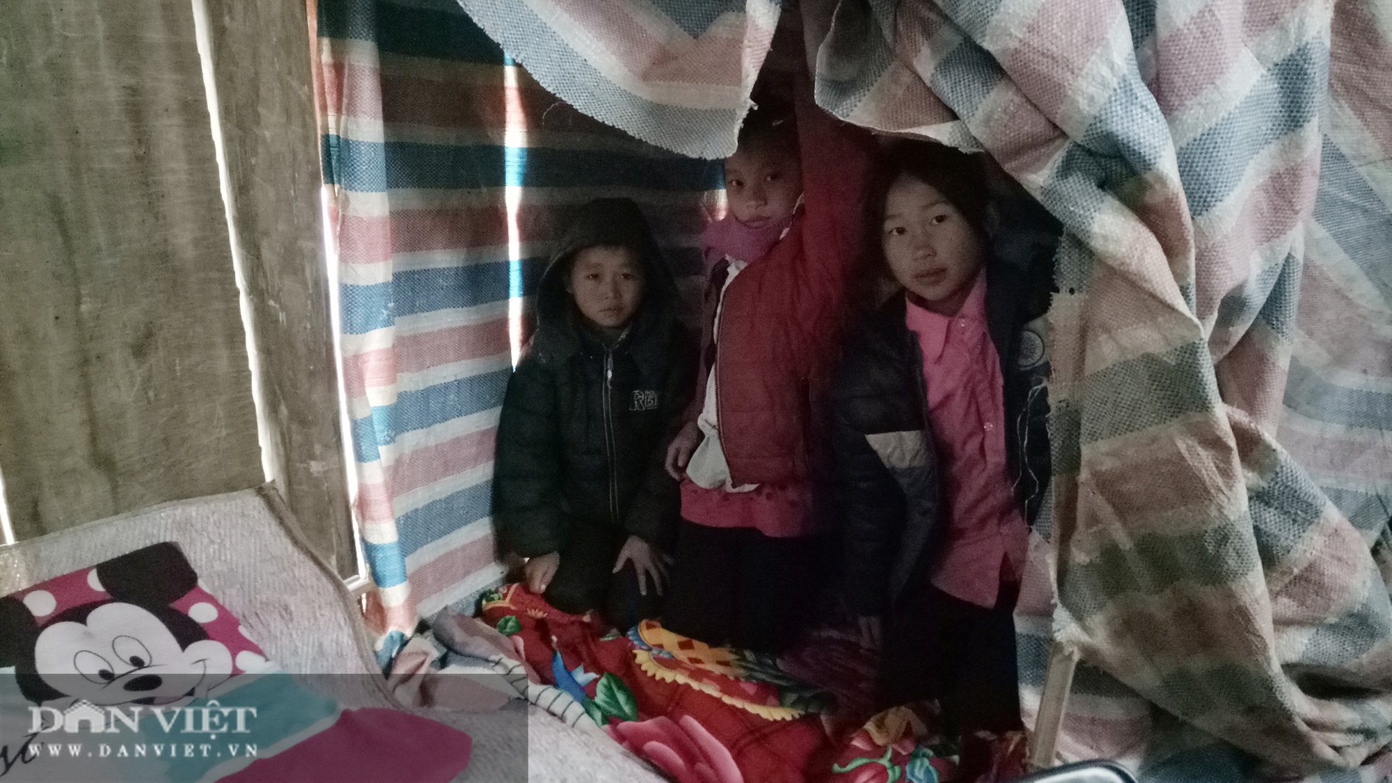 Hàng trăm trường học ở Sơn La cho học sinh nghỉ học do rét đậm - Ảnh 3.