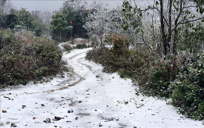 Mưa tuyết trắng trời Sa Pa và Y Tý - Ảnh 2.