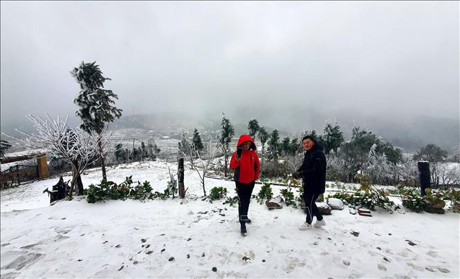Mưa tuyết trắng trời Sa Pa và Y Tý - Ảnh 4.