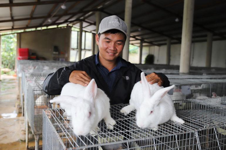 Bỏ lương 40 triệu, trai Lâm Đồng về quê trồng đồng cỏ xanh, nuôi thỏ trắng có thu được tiền tỷ không? - Ảnh 2.