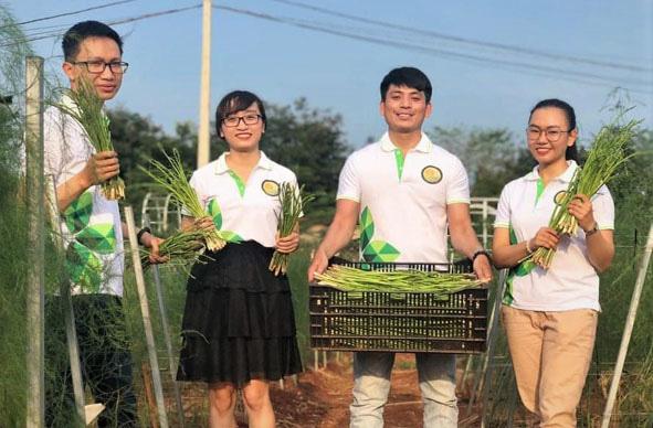 Cất bằng huấn luyện viên thể dục, 9X tỉnh Đắk Lắk về quê làm giám đốc trồng vô vàn rau lạ - Ảnh 3.