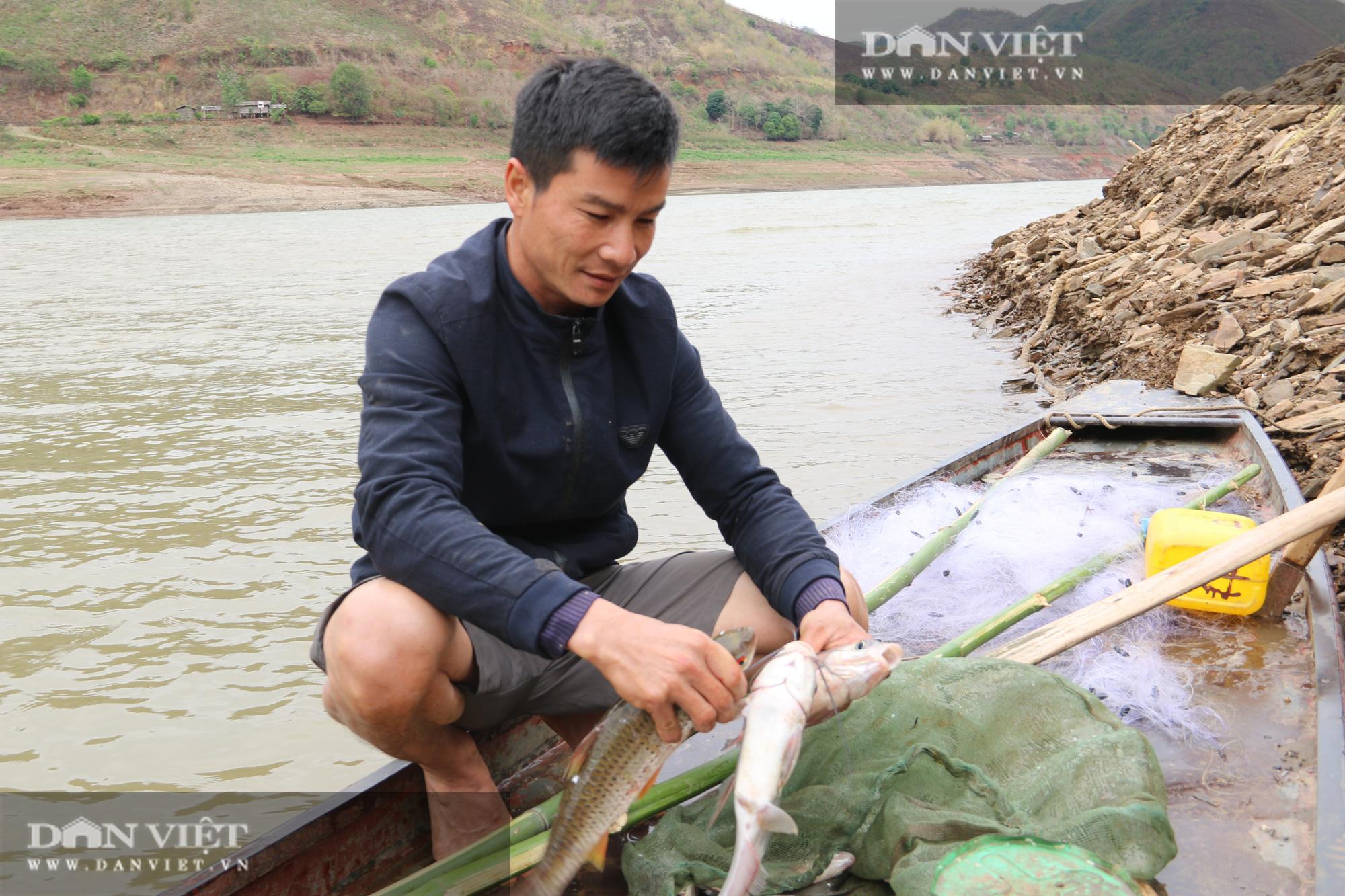 Đánh cá trong thời tiết rét buốt, ngư dân vẫn đút túi 1 triệu đồng/ngày - Ảnh 1.