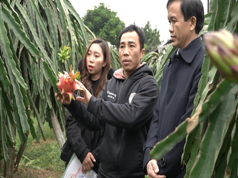 Công tác tuyên truyền là yếu tố quan trọng để Quỹ Hỗ trợ Nông dân đi đến thắng lợi - Ảnh 2.
