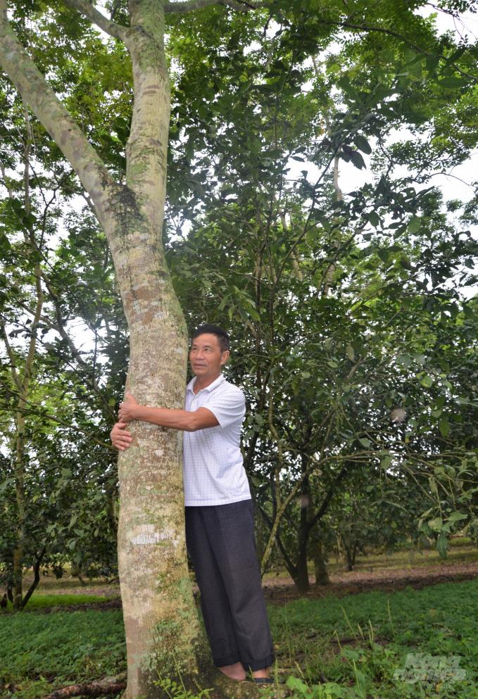 Tuyên Quang: Bất ngờ thành tỷ phú, giàu nhất vùng nhờ khổ công trồng 5.000 cây sưa 20 năm trước - Ảnh 2.