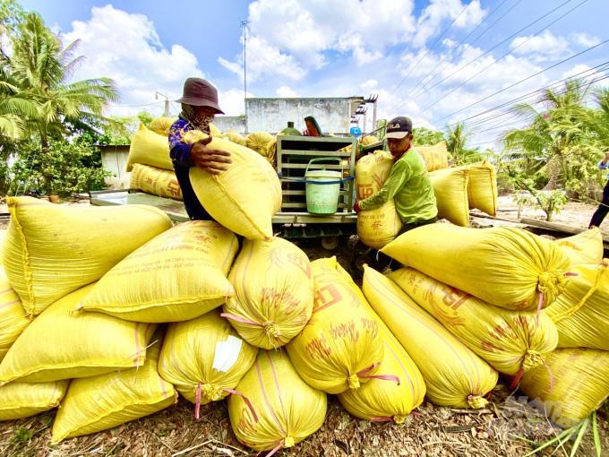 Giá nông sản hôm nay (14/1): Gạo khẳng định giá trị cao trên thị trường quốc tế, lợn hơi vẫn tăng từng ngày - Ảnh 2.