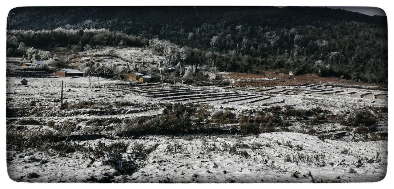 Lào Cai: Lạnh -3 độ C, Y Tý ngày tuyết rơi như chiếc tủ lạnh khổng lồ, đẹp như trời Âu - Ảnh 15.