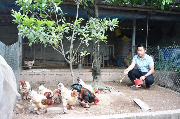 Đi sau vẫn thành công nhờ áp dụng 4.0 vào nuôi gà Đông Tảo - Ảnh 2.