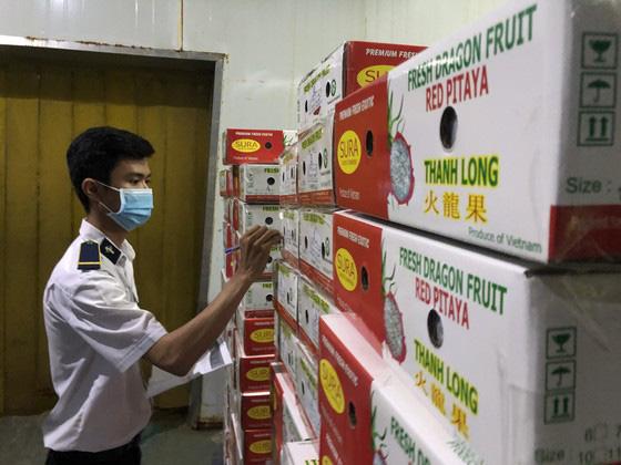 Nông sản Việt Nam xuất khẩu tăng mạnh nhờ tiếp cận thị trường 2,2 tỷ người - Ảnh 3.