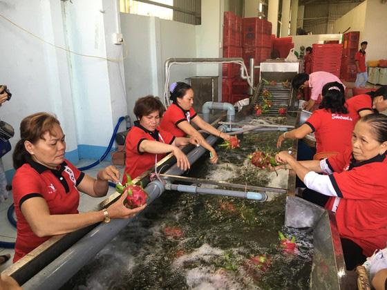 Nông sản Việt Nam xuất khẩu tăng mạnh nhờ tiếp cận thị trường 2,2 tỷ người - Ảnh 1.