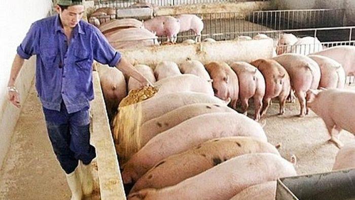 Giá nông sản hôm nay (16/1): Tiêu tiếp tục những ngày giao dịch ảm đạm, cà phê đảo chiều tăng - Ảnh 3.