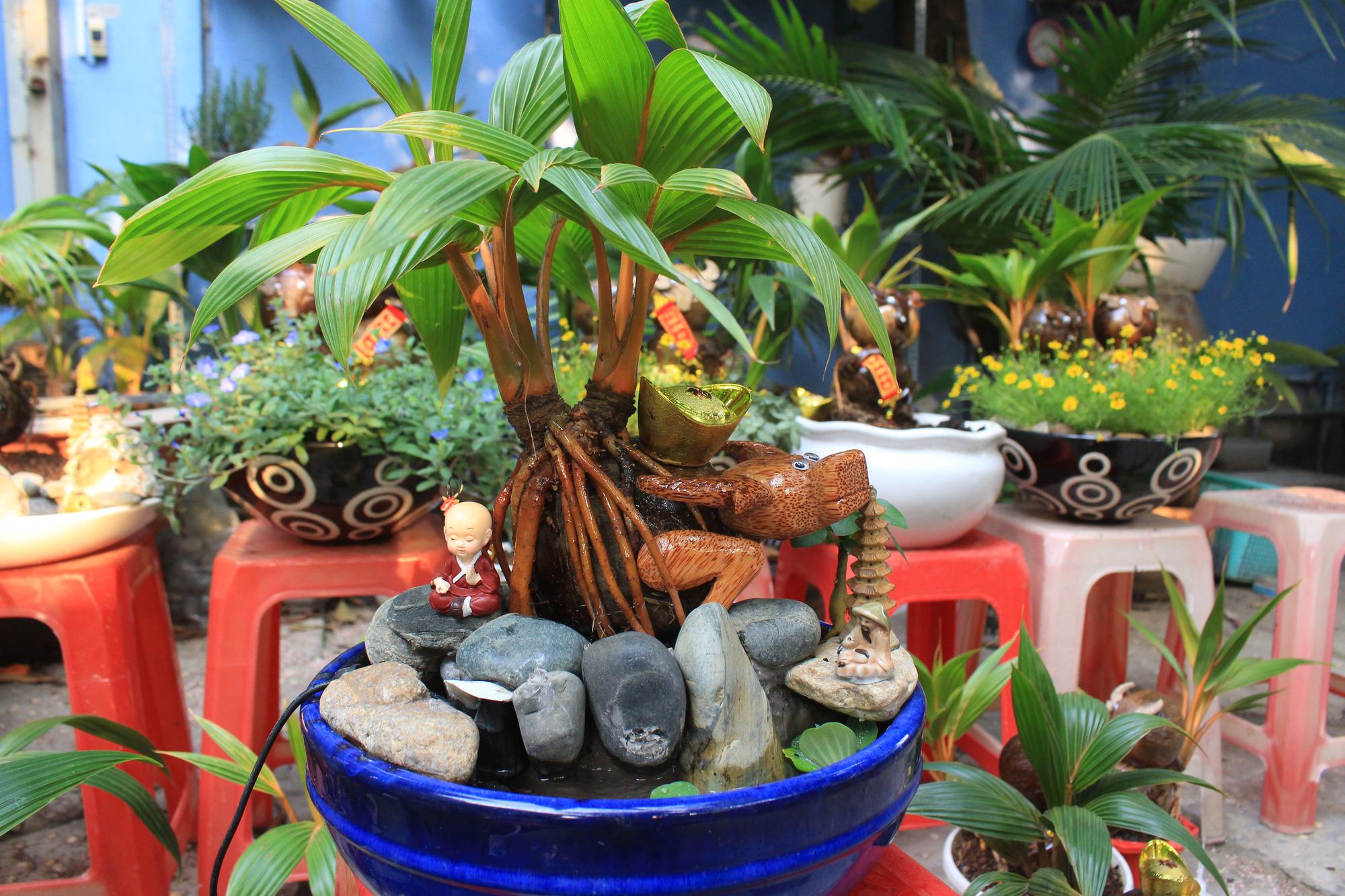 Độc đáo dừa khô bonsai hình trâu chơi Tết tiền triệu ở Sài Gòn - Ảnh 2.