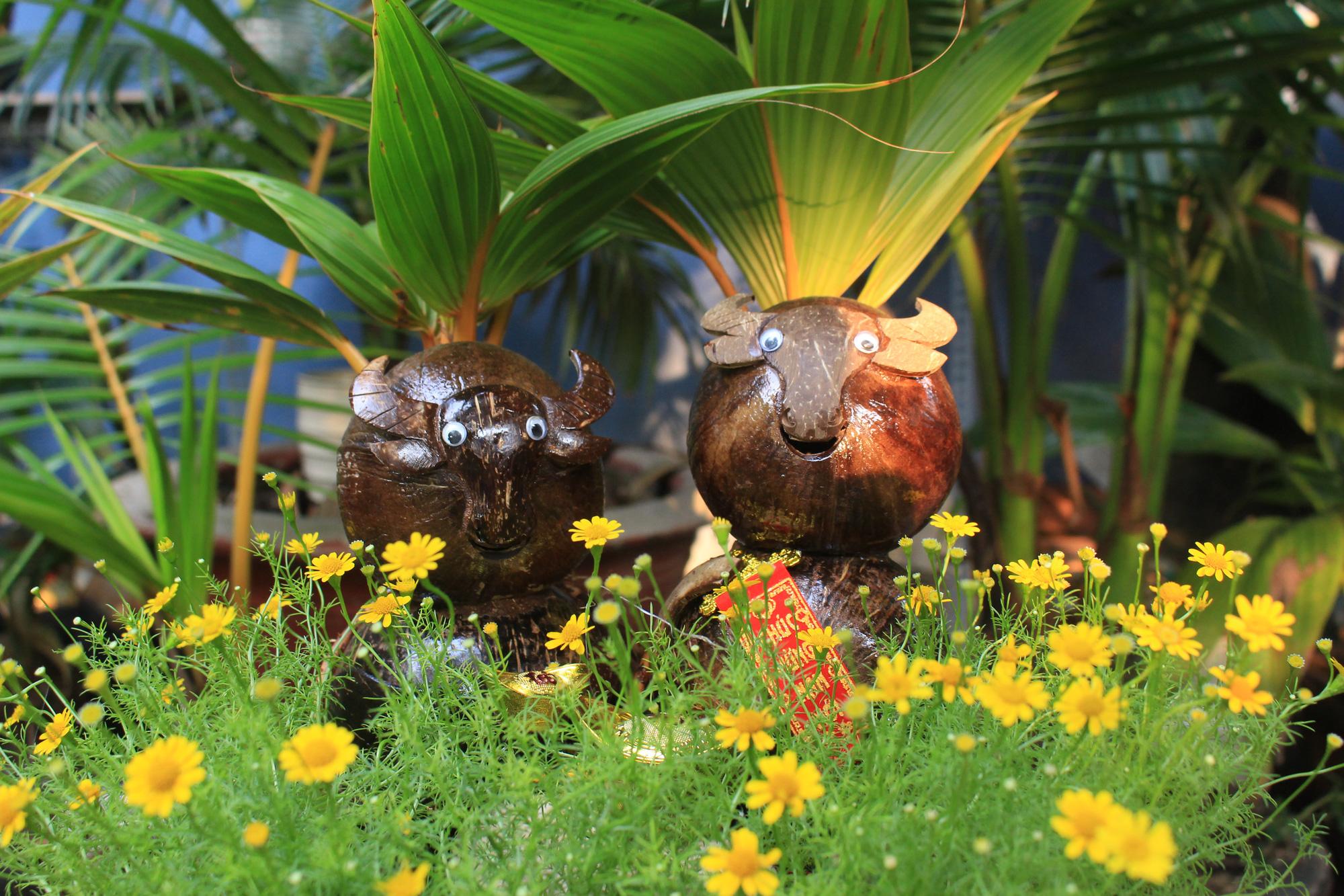 Độc đáo dừa khô bonsai hình trâu chơi Tết tiền triệu ở Sài Gòn - Ảnh 3.