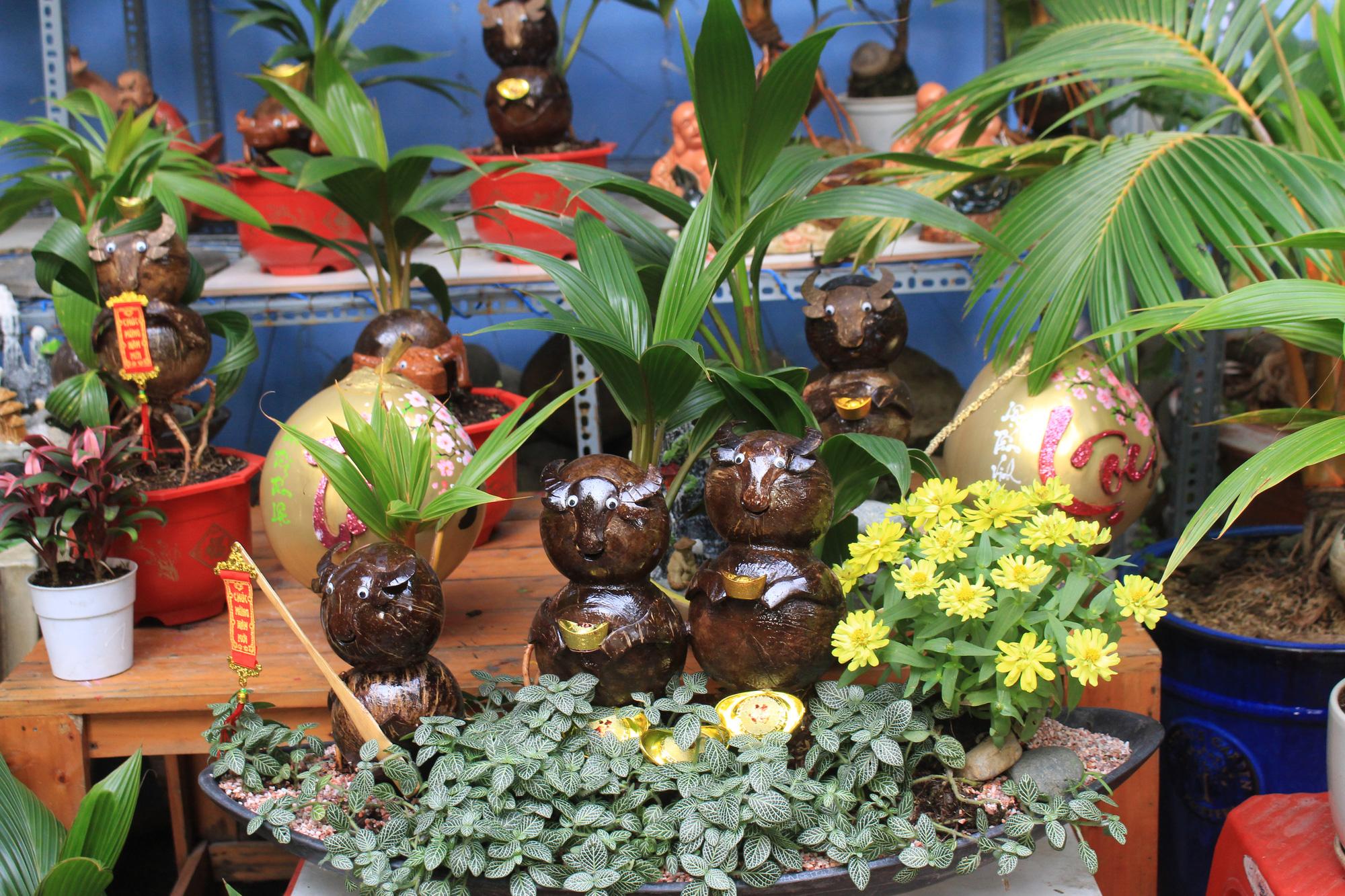 Độc đáo dừa khô bonsai hình trâu chơi Tết tiền triệu ở Sài Gòn - Ảnh 12.