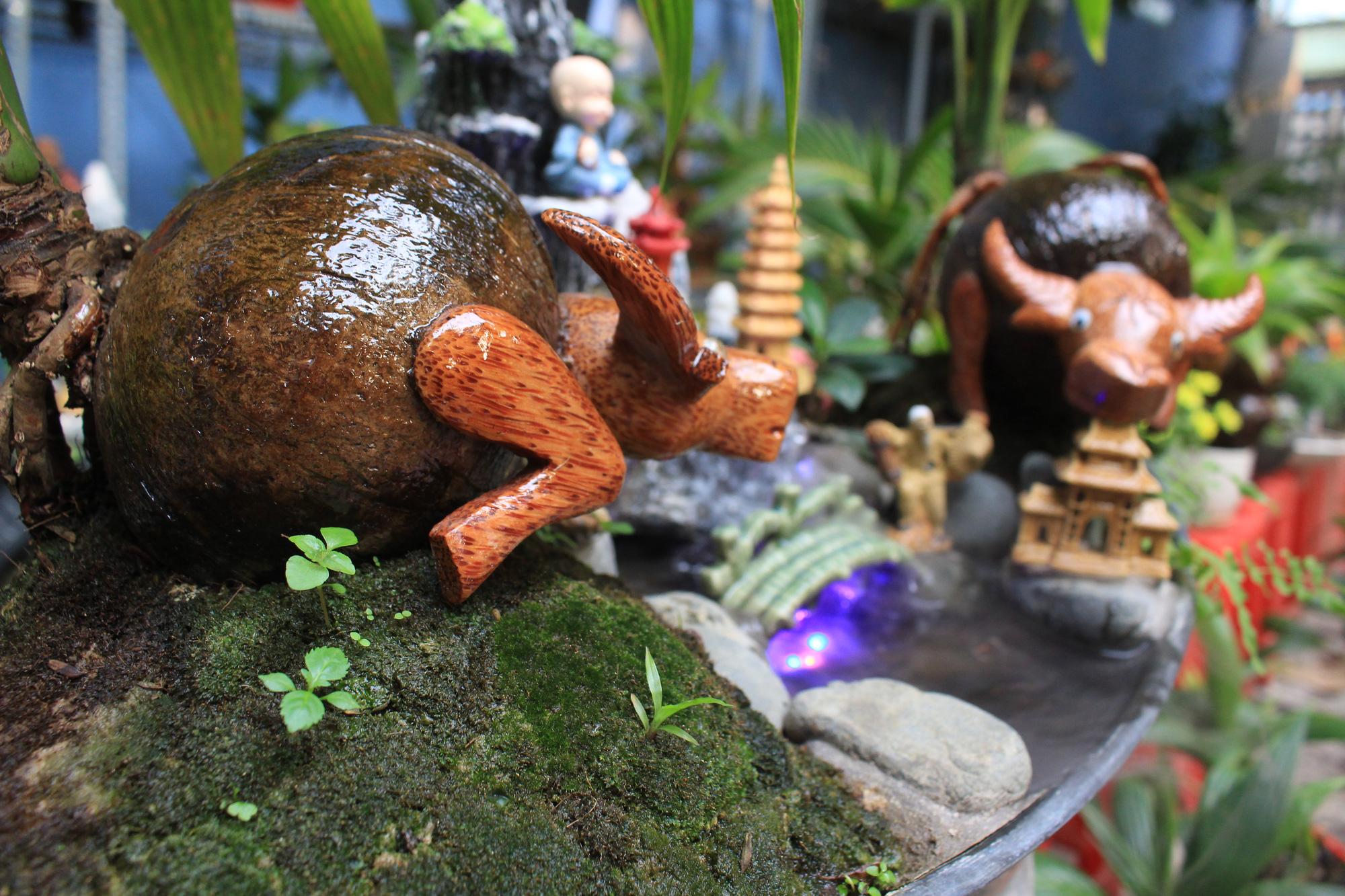 Độc đáo dừa khô bonsai hình trâu chơi Tết tiền triệu ở Sài Gòn - Ảnh 11.